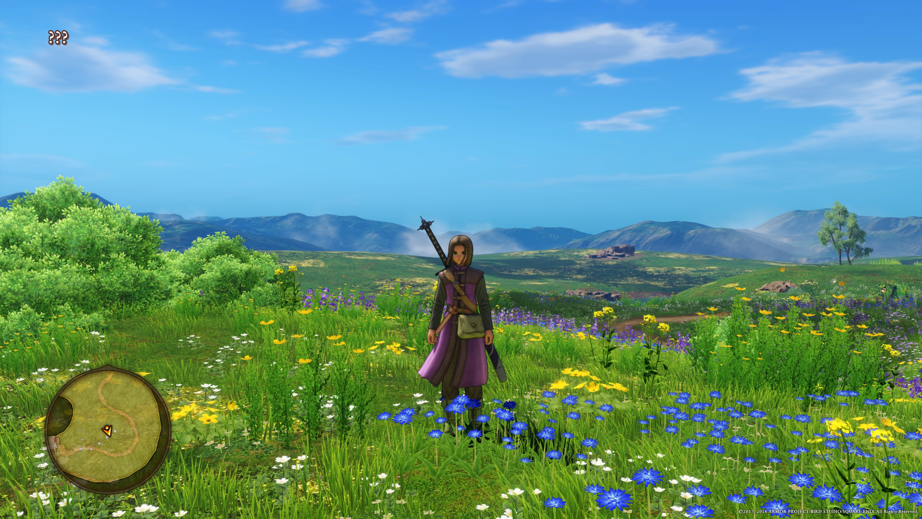 The protagonist stands alone in a lush, green field.